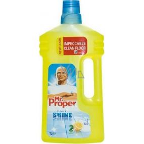 Mr Proper Clean Amp Shine Lemon Univerz 225 Ln 237 čistič Včetně