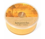 Heart & Home Amber Forest Soy Candle in Mistletoe 36 g