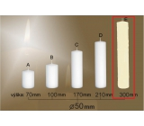 Lima Gastro smooth candle ivory cylinder 50 x 300 mm 1 piece