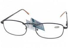 Berkeley Reading glasses +3.0 brown metal 1 piece MC2005