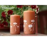 Lima Citronela svíčka proti komárům vonná repelentní s motivem květin skořicová válec 60 x 120 mm