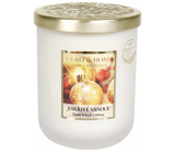 Heart & Home Sparkling Christmas Soy scented candle medium burns up to 30 hours 115 g
