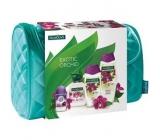Palmolive Orchid shower gel 250 ml + bath foam 500 ml + liquid soap 300 ml + Speed.st. + etu, gift set