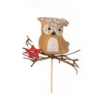 Owl with wicker red star groove 6 cm + skewers