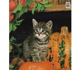 Press Plastic bag 44 x 50 cm Kitten and pumpkin 1 piece