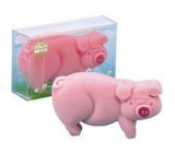 Kappus Piggy bank pink toilet soap in attractive, transparent box 100 g