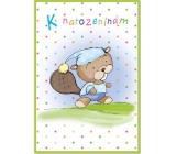 Ditipo Hrací přání k narozeninám K narozeninám Petr Skoumal Když jde malý bobr spát 224 x 157 mm