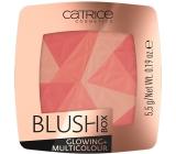 Catrice Blush Box Glowing + Multicolour Blusher 010 Dolce Vita 5.5 g