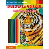 Coloring book by numbers with crayons Tiger 24 x 29 cm