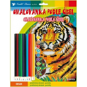 Coloring Book by Crayons Tiger 24 x 29 cm