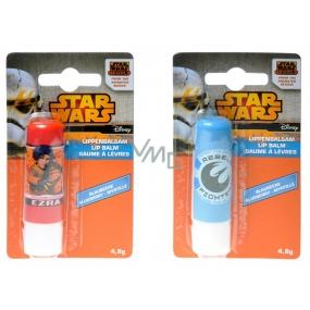 Disney Star Wars Lip Balm for Children 4.8 g